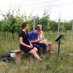Drei Musiker auf einer Holzbank im Gras im Weingarten.
